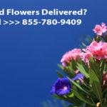 Flowers Banner